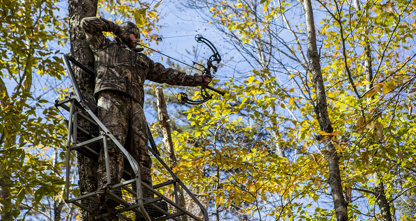 Bow hunting from a tree stand